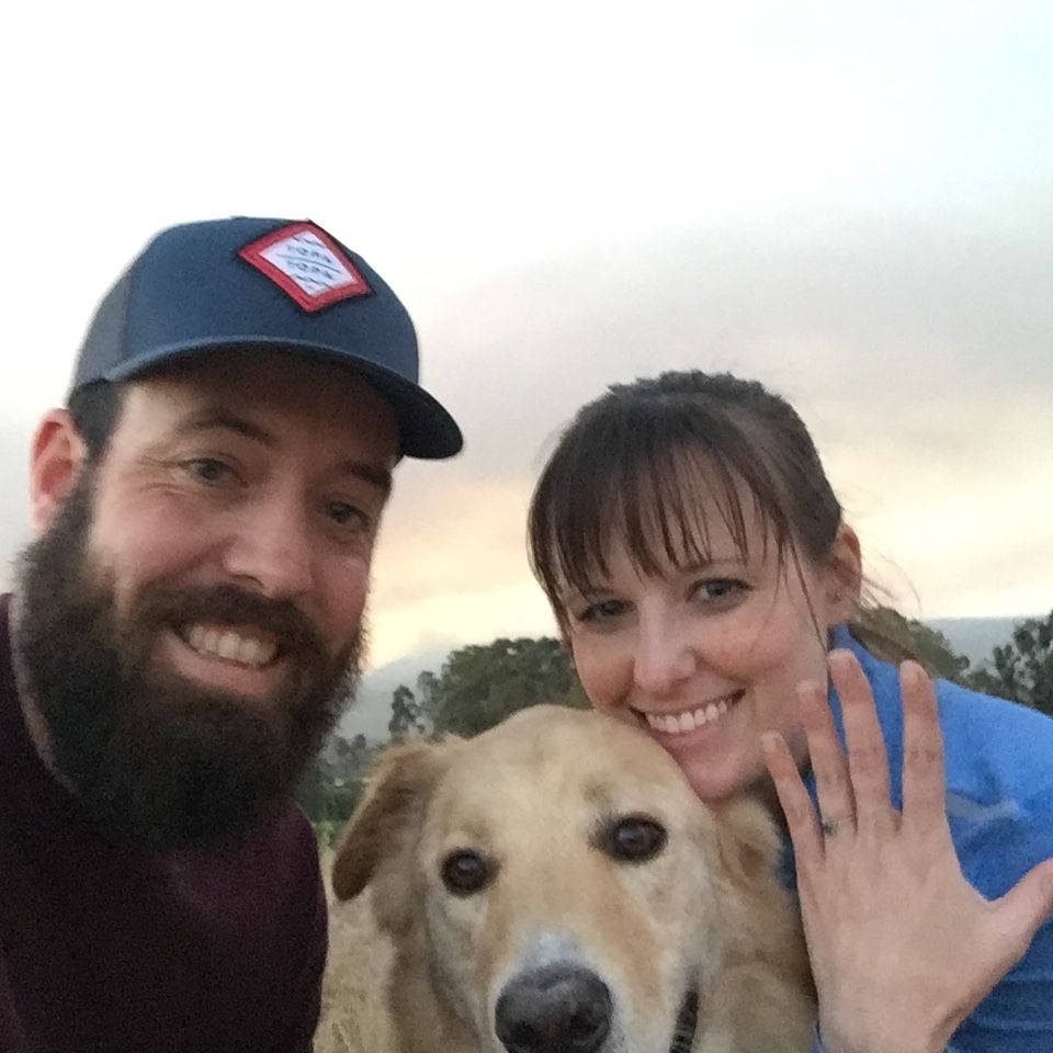 5 of the Sweetest Dog Proposal Stories