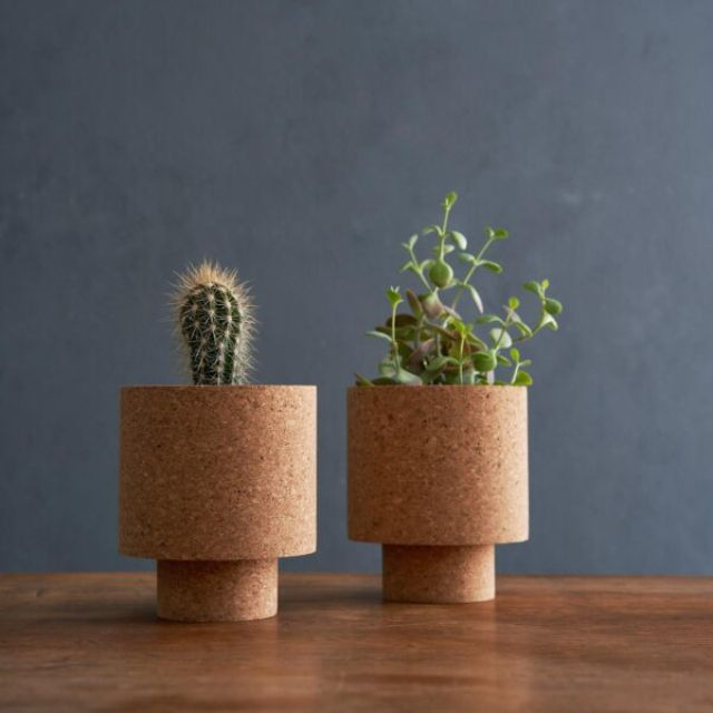 Isla Natural Cork Planter with two plants in them