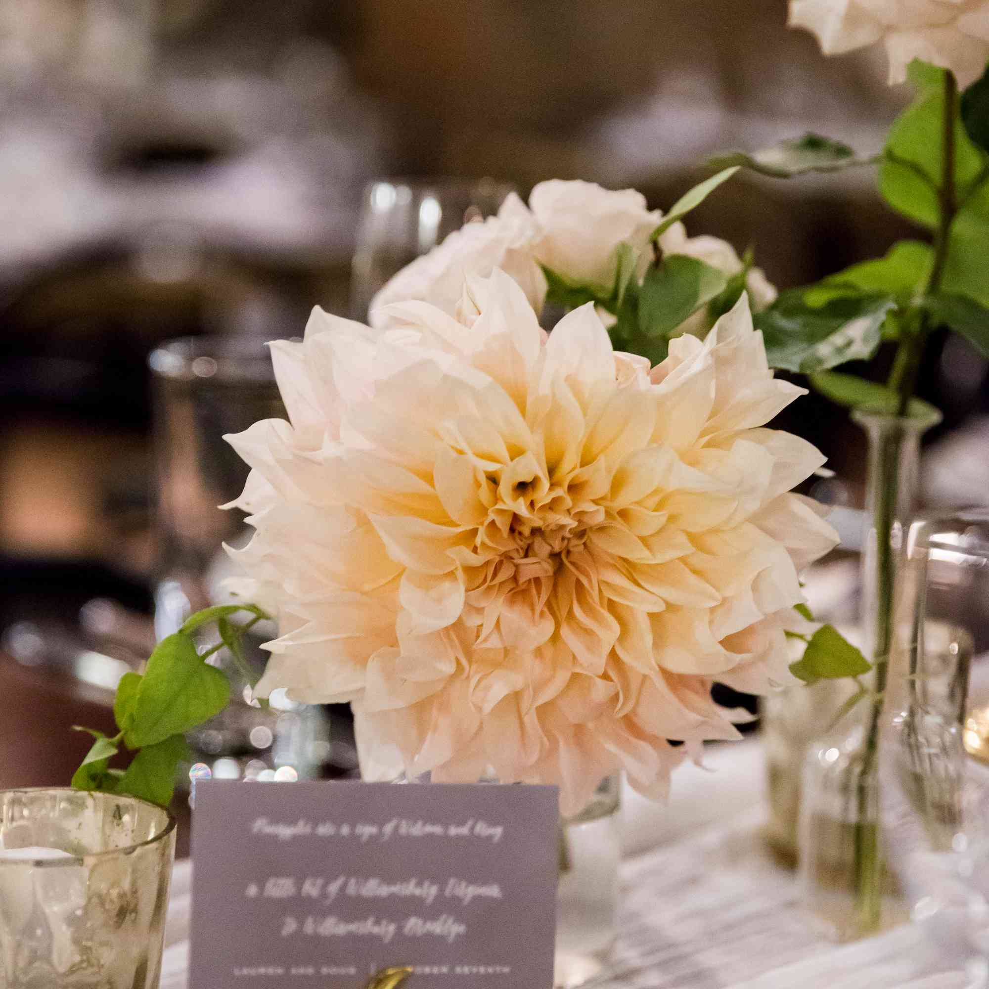 Statement-Making Solo Blooms