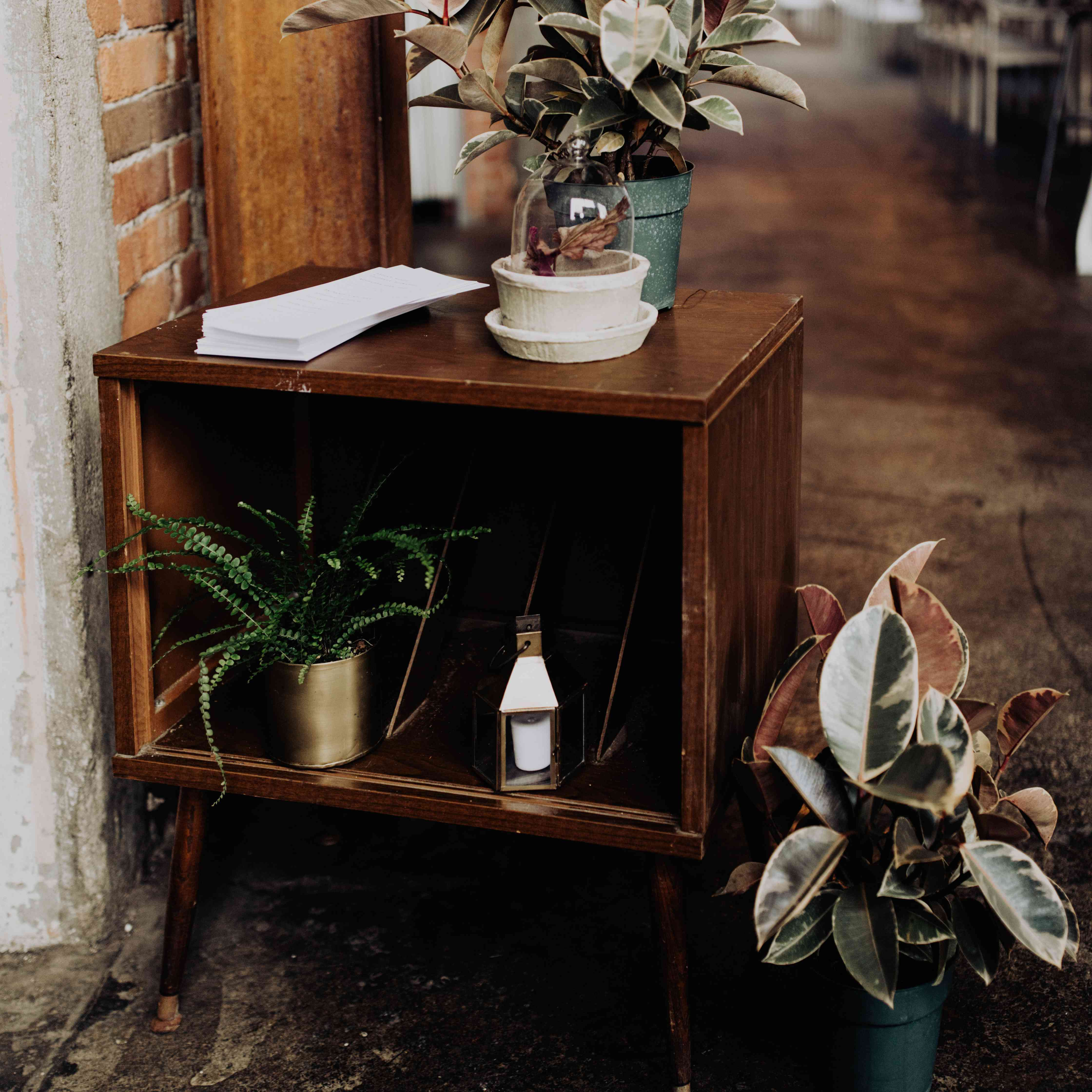 potted plants as wedding flowers