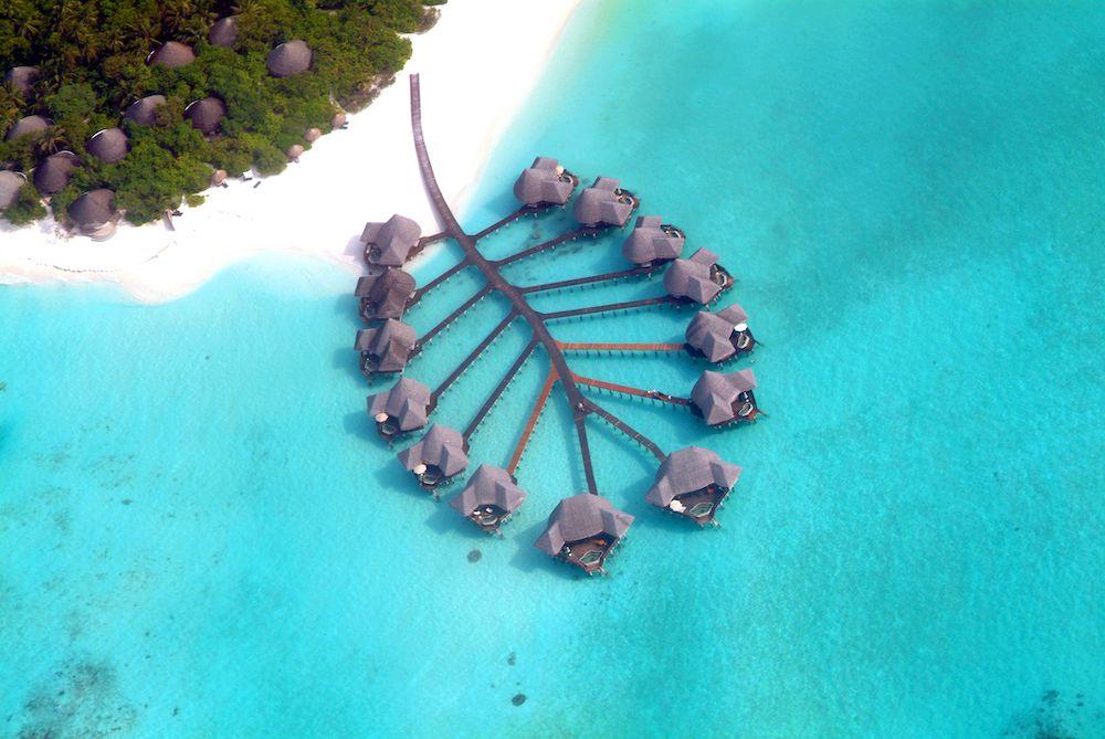 stingray-shaped villas