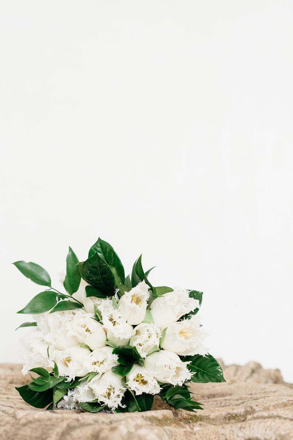 White fringed tulip bouquet