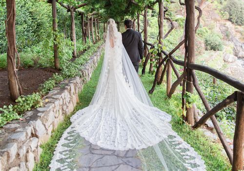 Bride in Wedding Dress and Veil