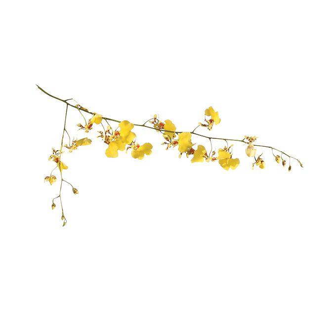 Yellow Oncidium Orchid branch