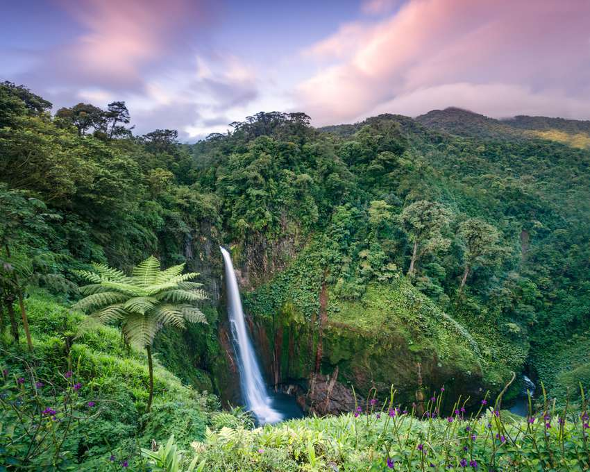 Waterfall in the green forest of Costa Rica