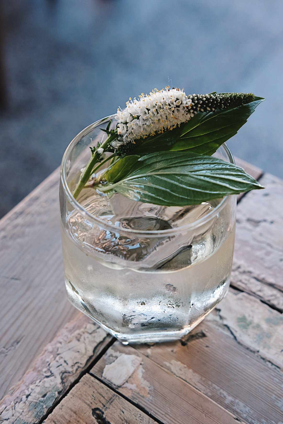 alcohol, signature cocktail, drink, glass, ice, beverage, bar, edible flowers, highball glass