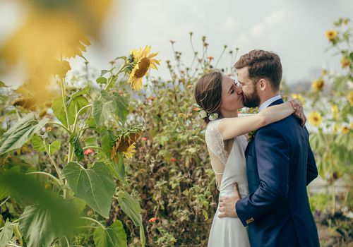 Bride and groom kissing in sunflowers