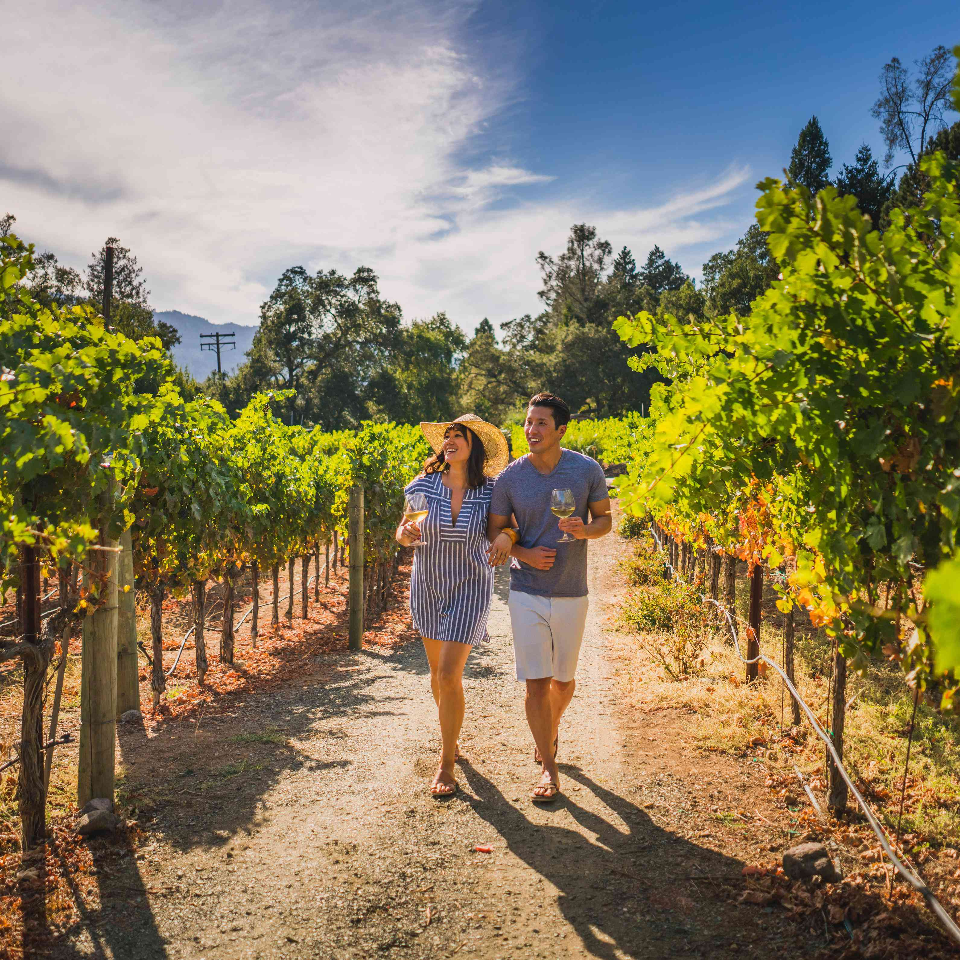 A Laid-Back Napa Valley Honeymoon Guide