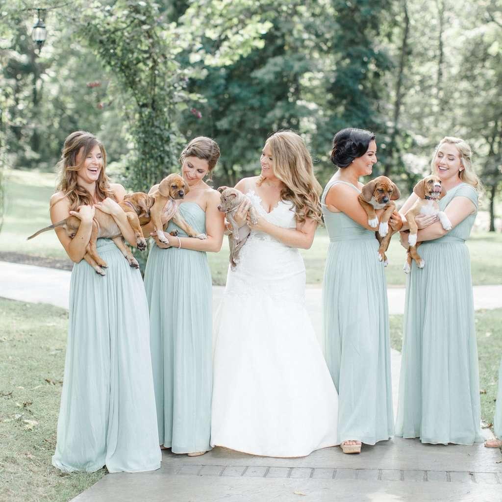 Bridesmaids Holding Puppies