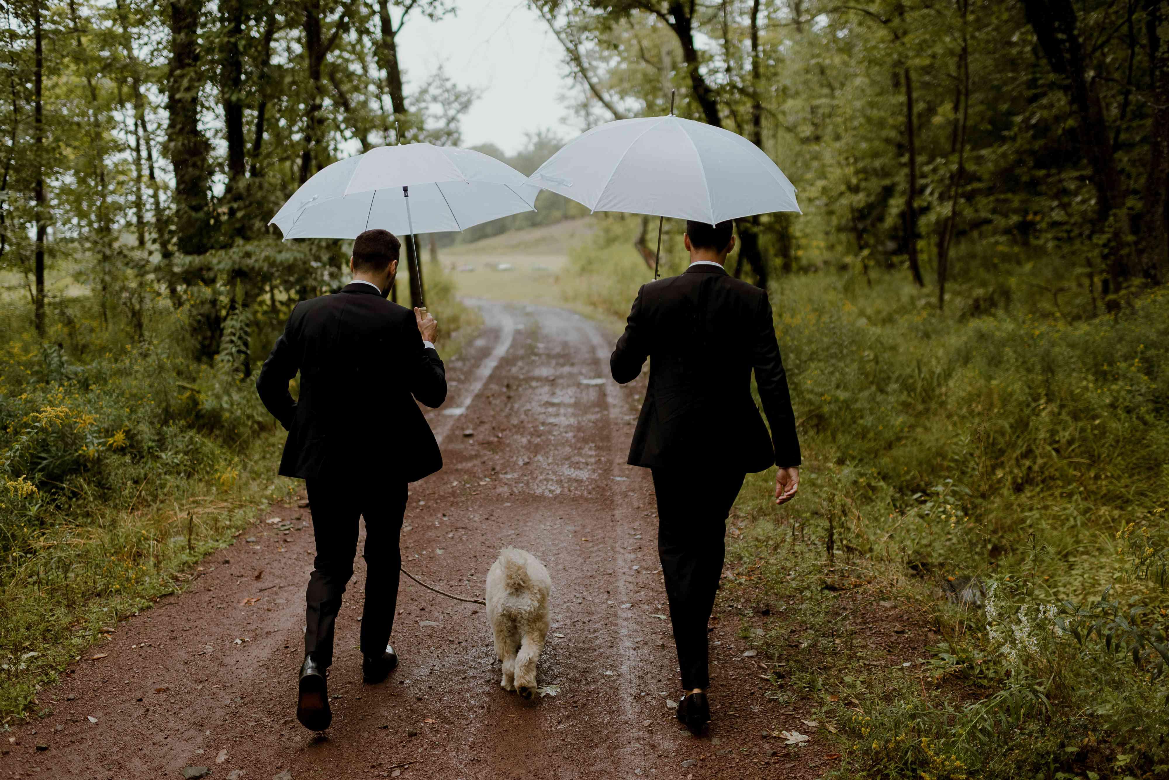 Grooms walking dog down road