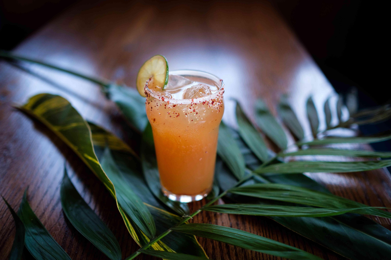 alcohol, signature cocktail, drink, glass, ice, beverage, bar, leaf, tropical, salt rim, lime, citrus
