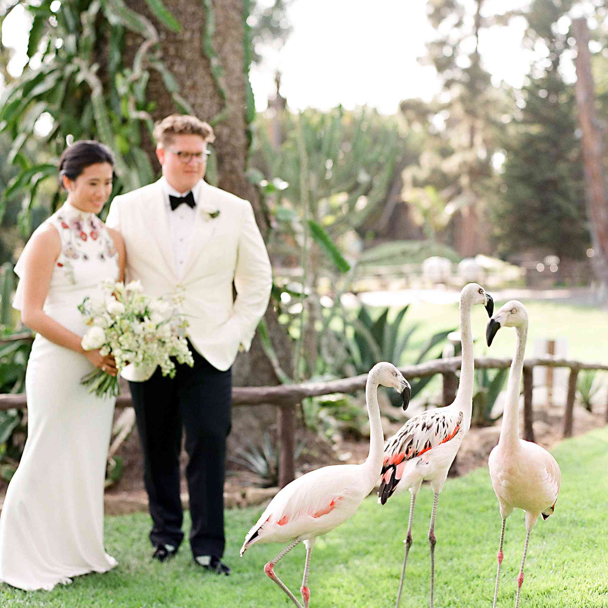 Bride and groom with flamingos