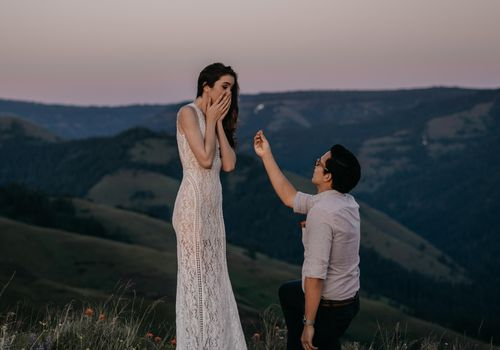 <p>Romantic Proposal on Hilltop</p>