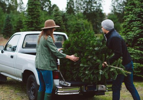 Woman and man putting Christmas tree in truck bed