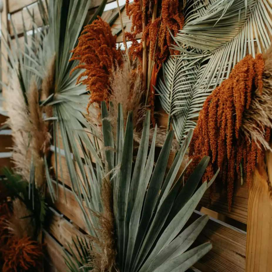 Backdrop of dried palm leaves and dried flowers