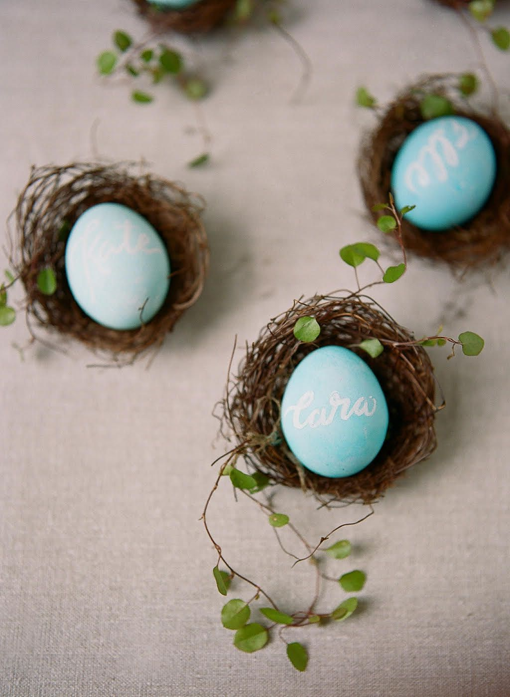 Three blue colored egg place cards in little nests