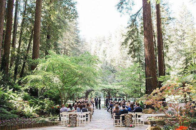 Wedding under redwood trees at Nestldown