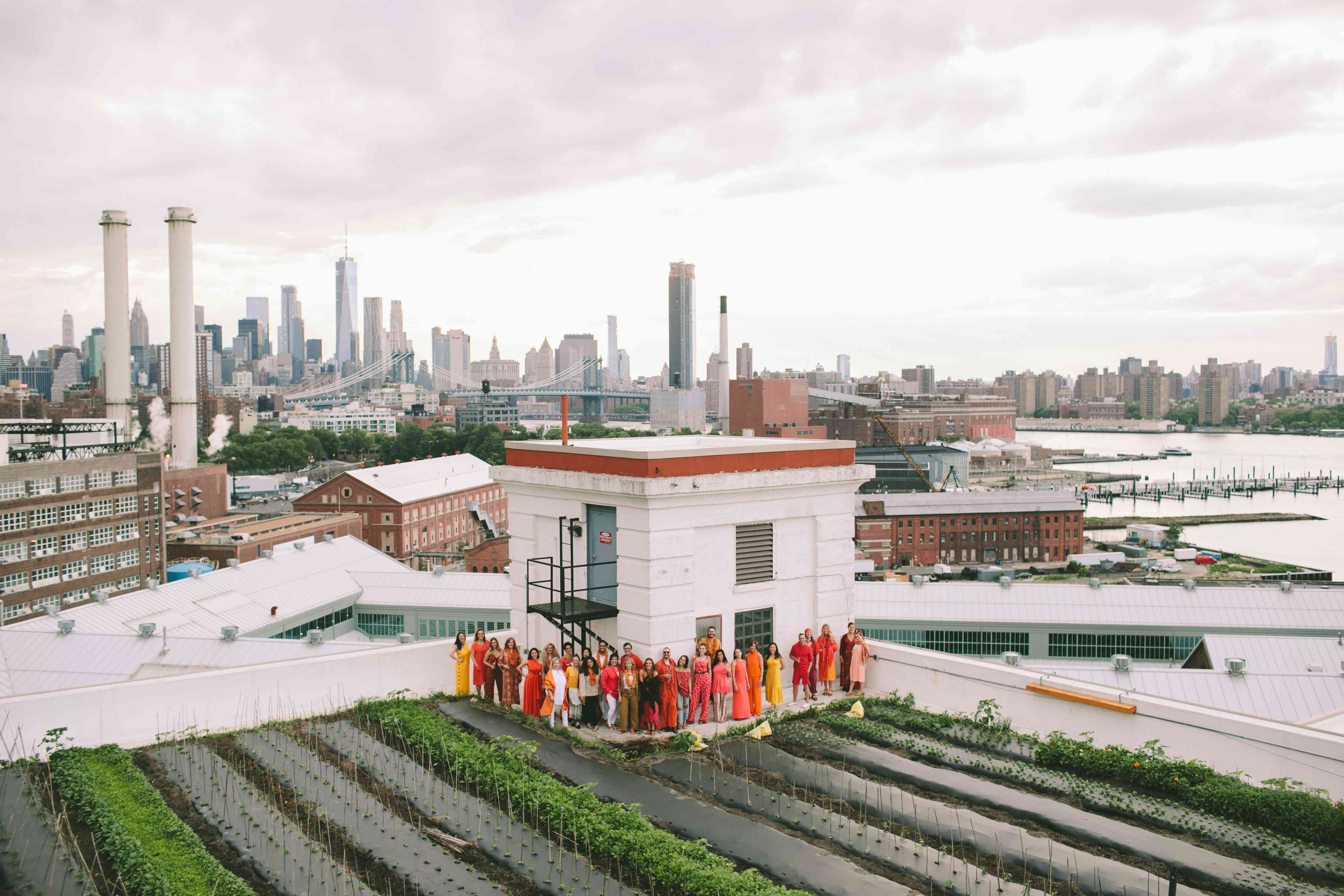 Aerial view of wedding guests in coordinating color palette