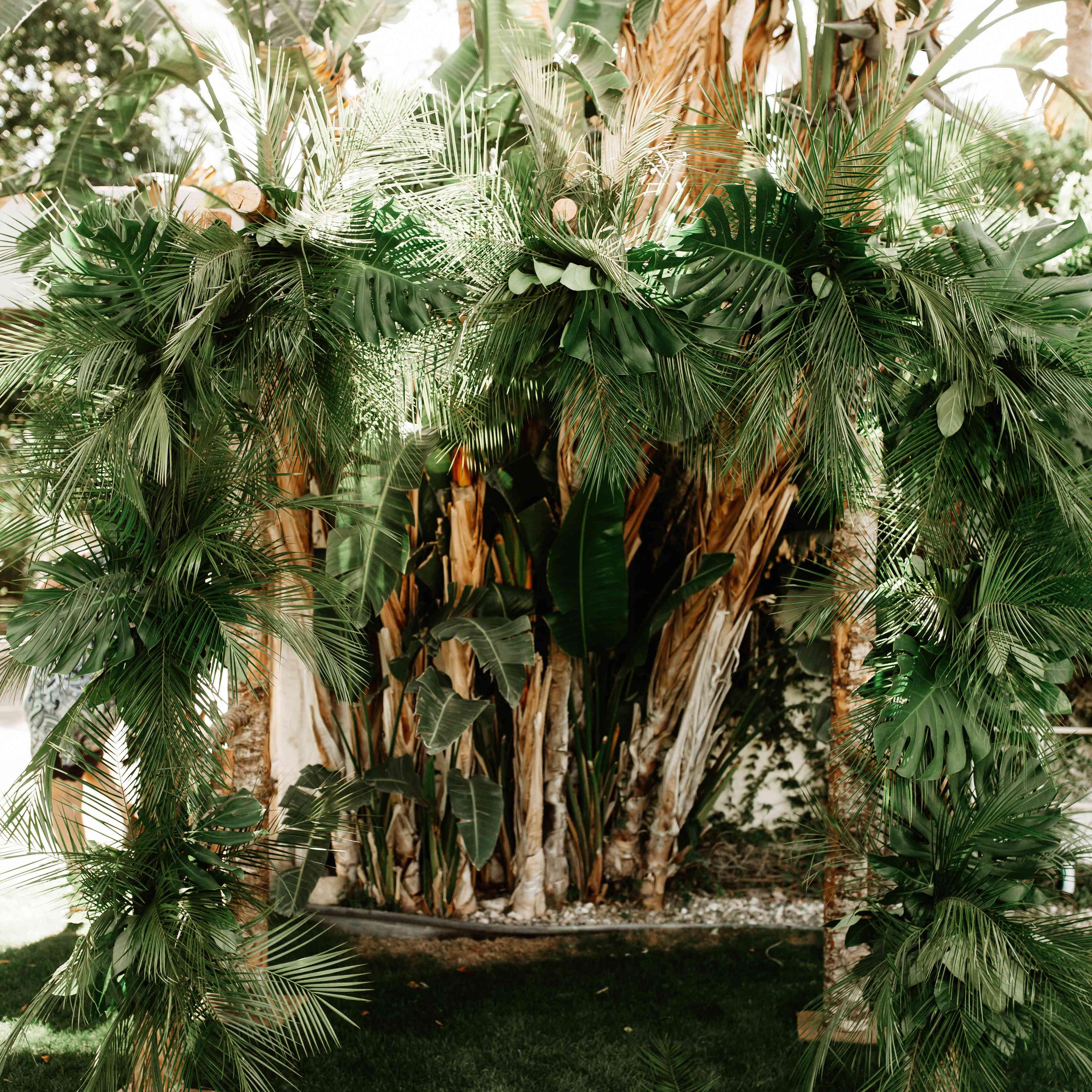 Tropical ceremony backdrop