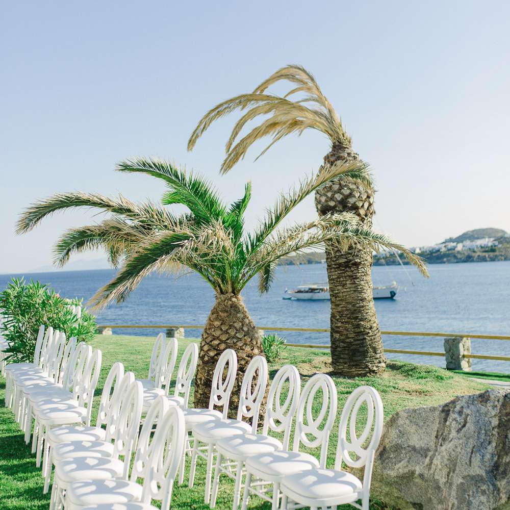 seaside ceremony palm trees