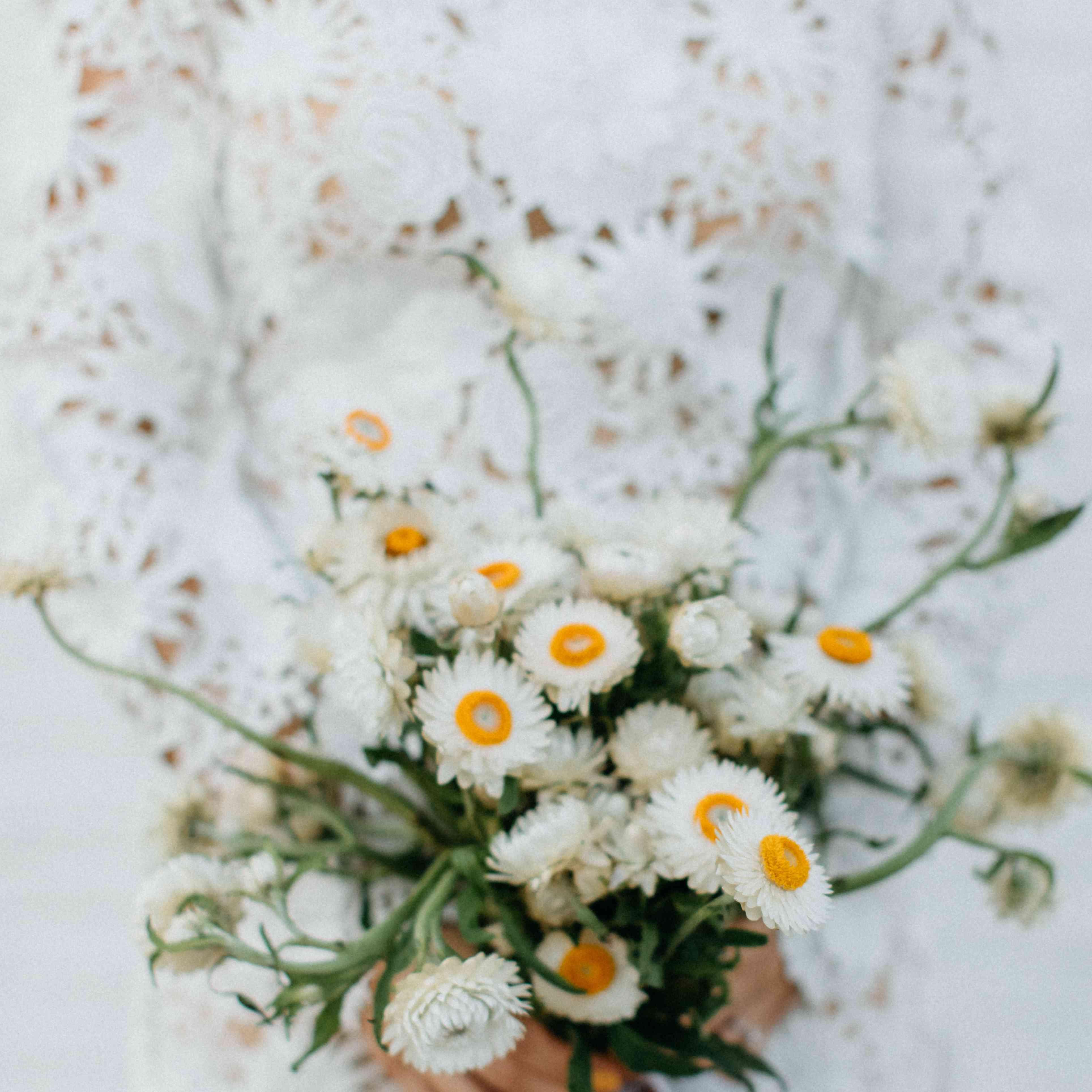 Bride holding a bundle of wild cornflowers