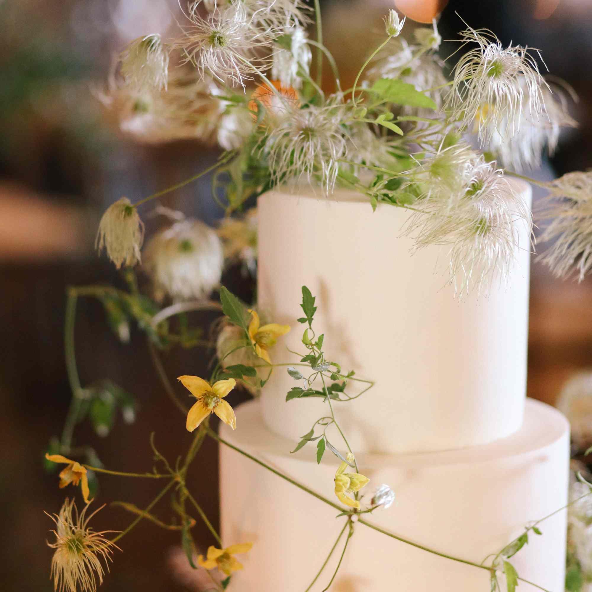 savannah and riker wedding, cake