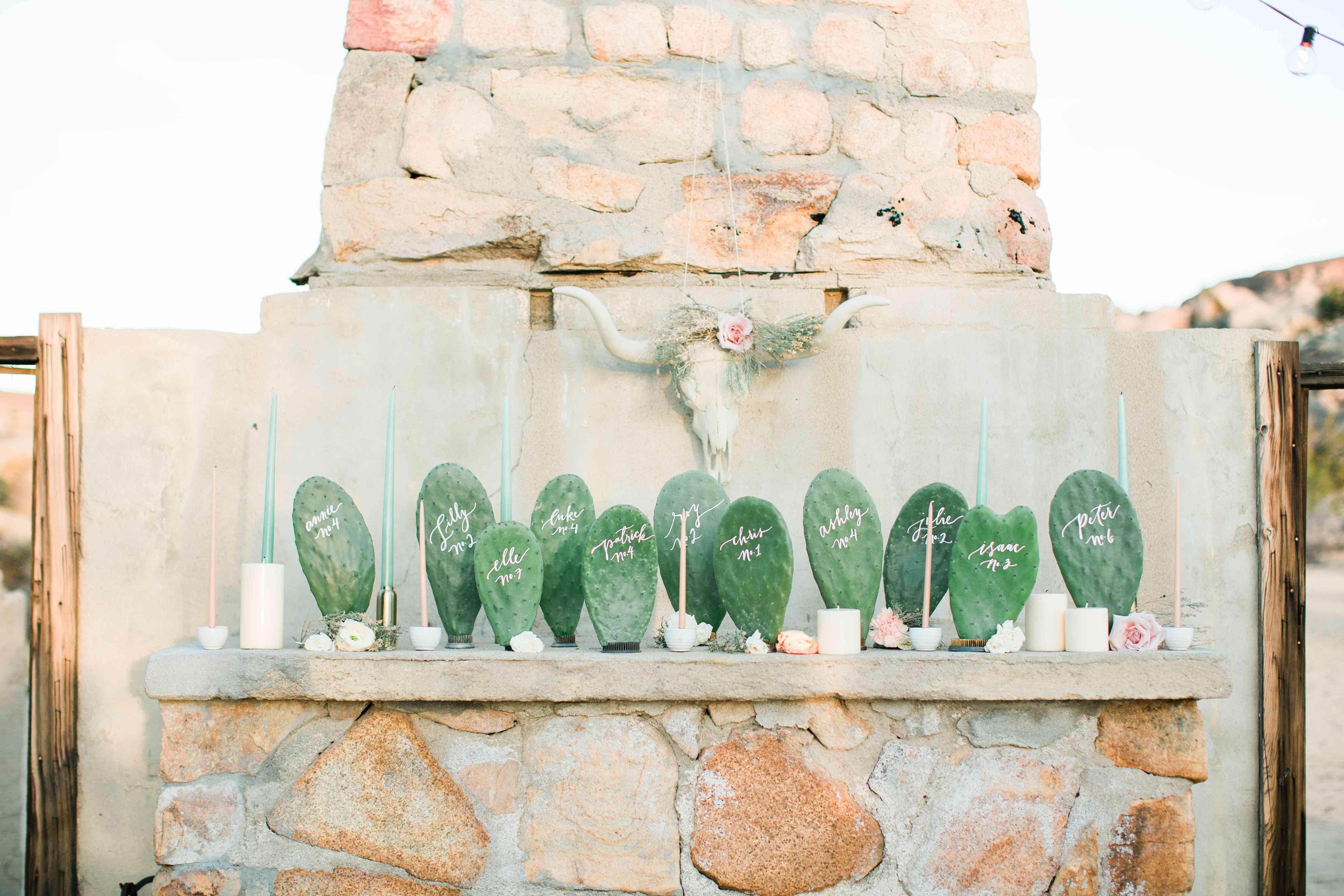 Cactus Escort Card Table