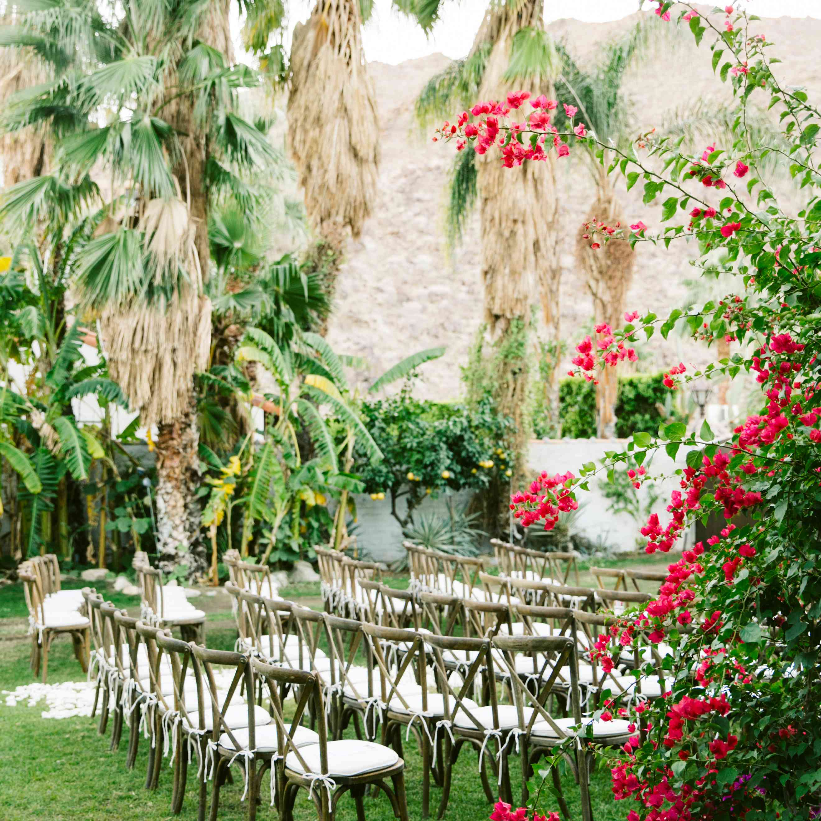 Wedding aisle lined with rose petals and pampas grass hanging upside down