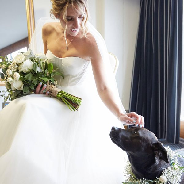 <p>Bride and Dog with Flower Collar</p>