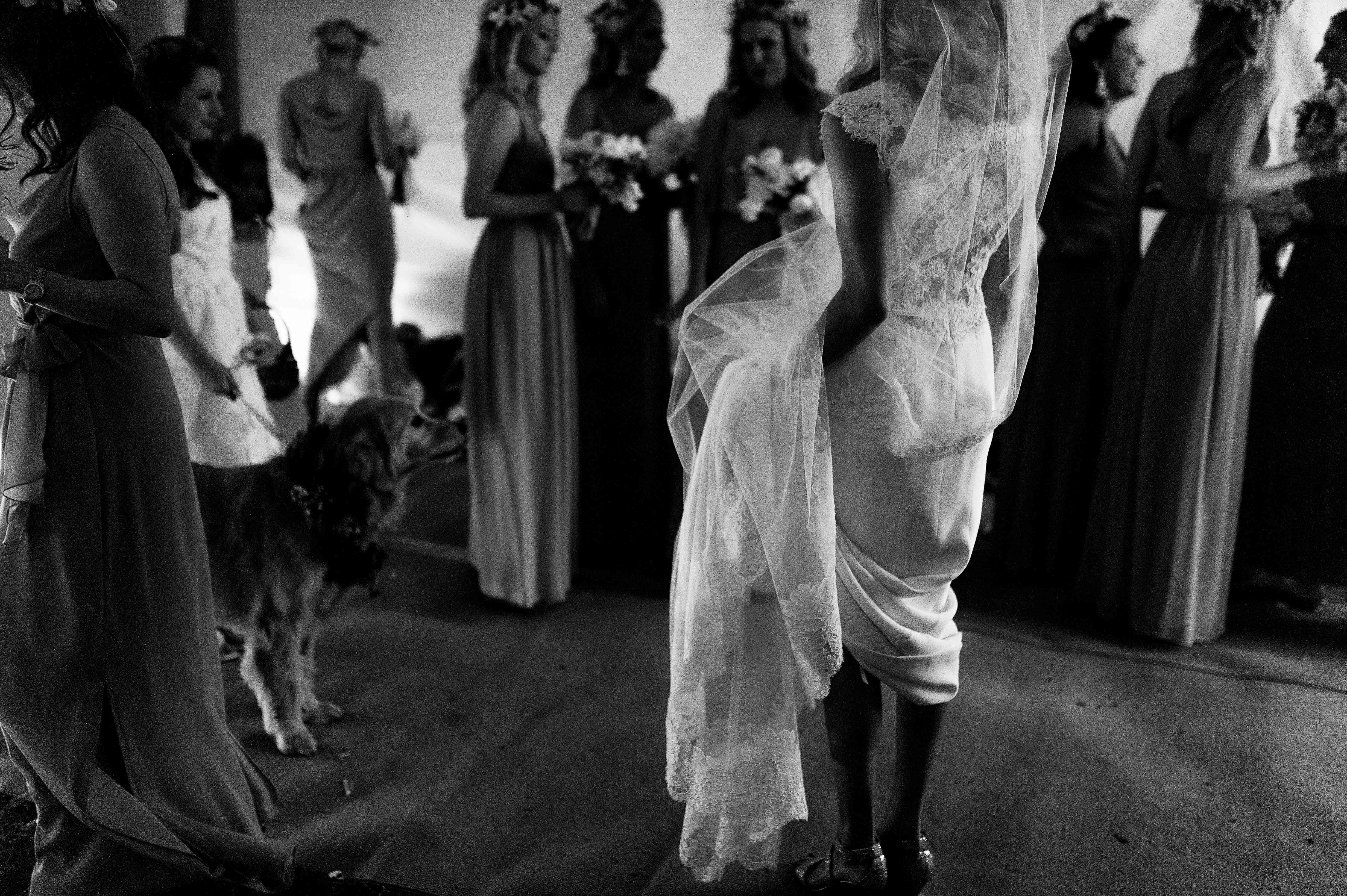 Bride holding train