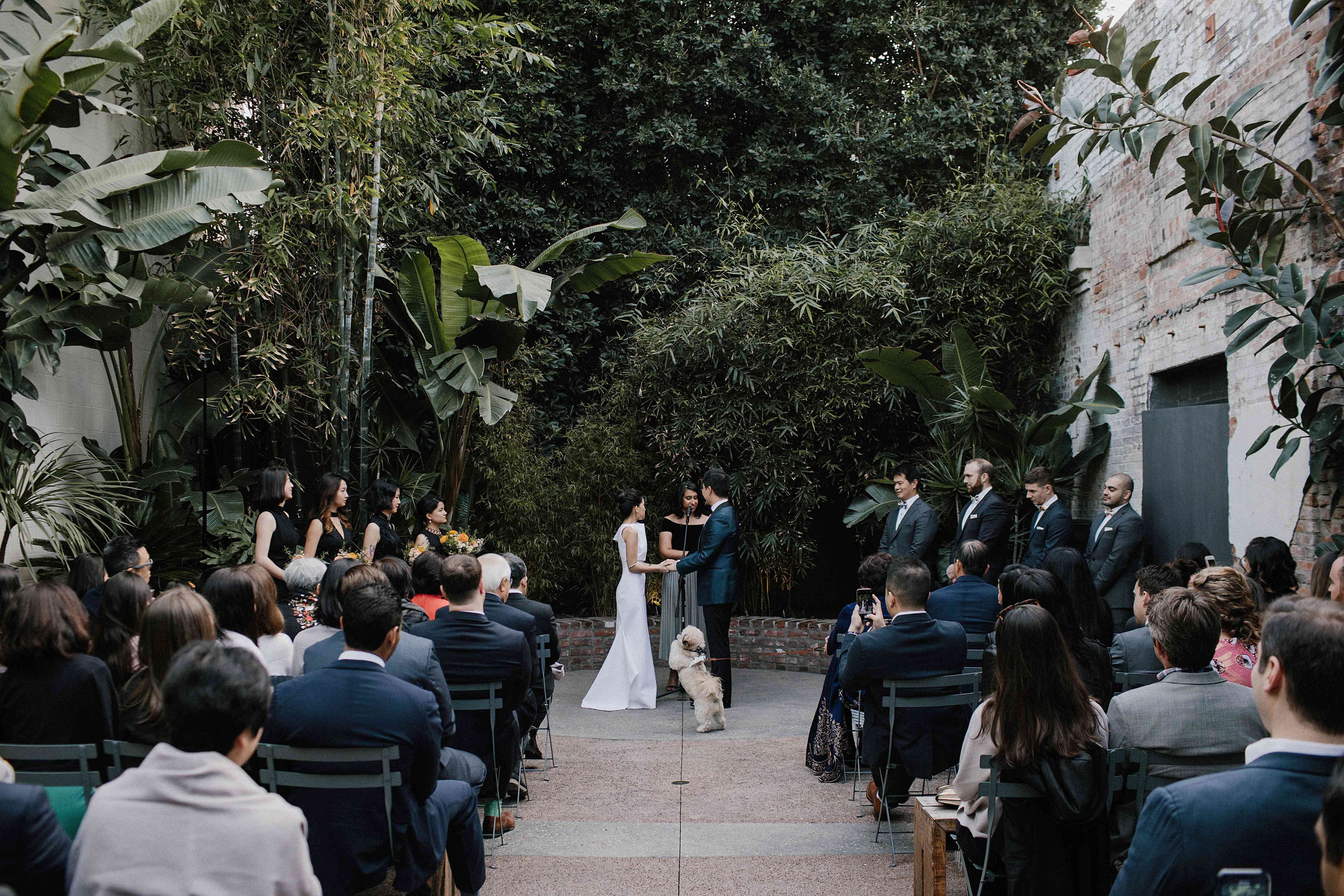 <p>Bride and groom at ceremony with dog</p><br><br>