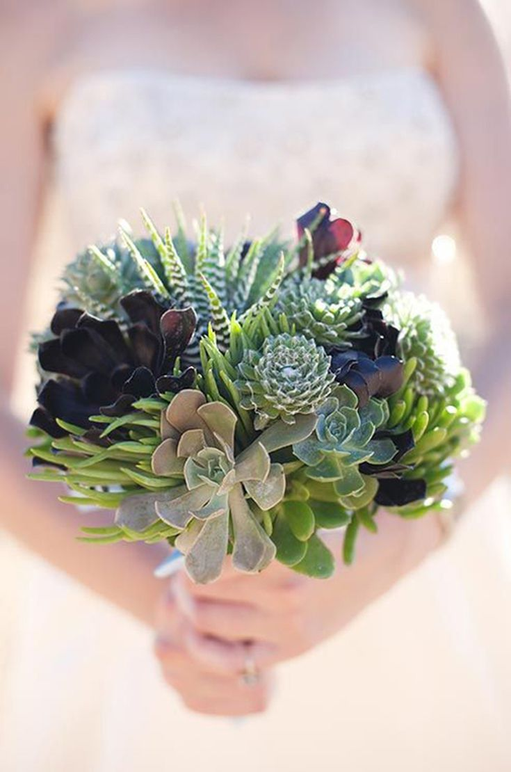 In Season Now 13 Stylish Ways To Use Succulents