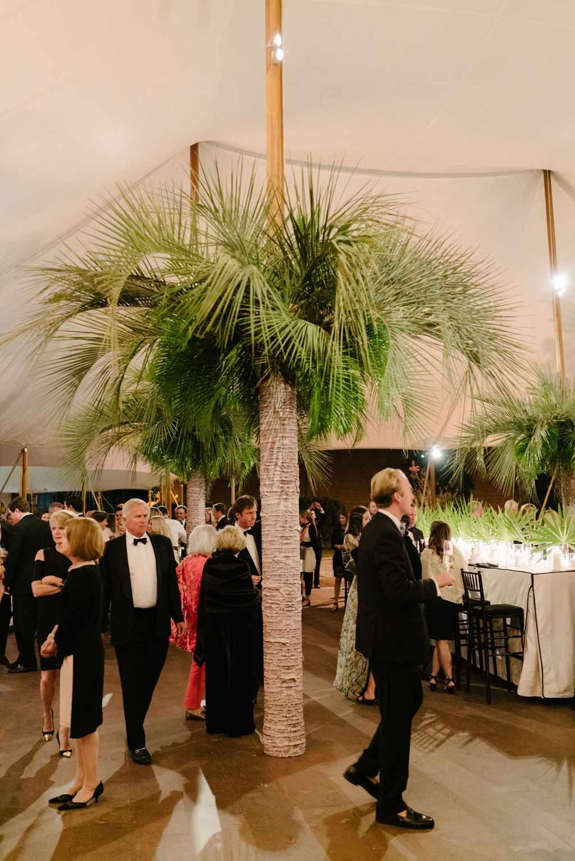 augusta wedding, palm trees