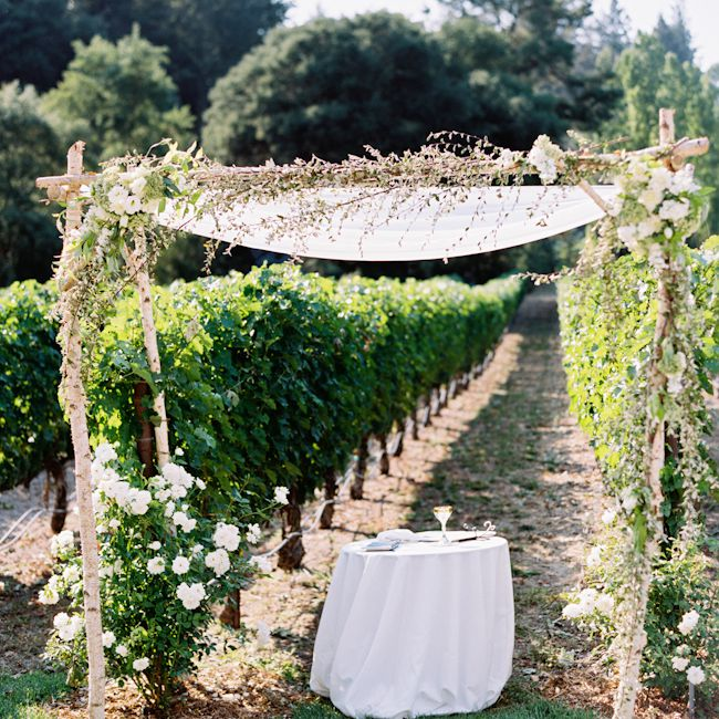 An arch in front of a vineyard