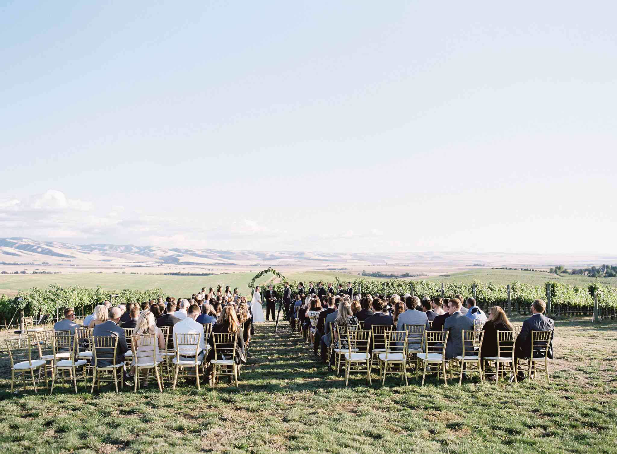 Guests at vineyard ceremony