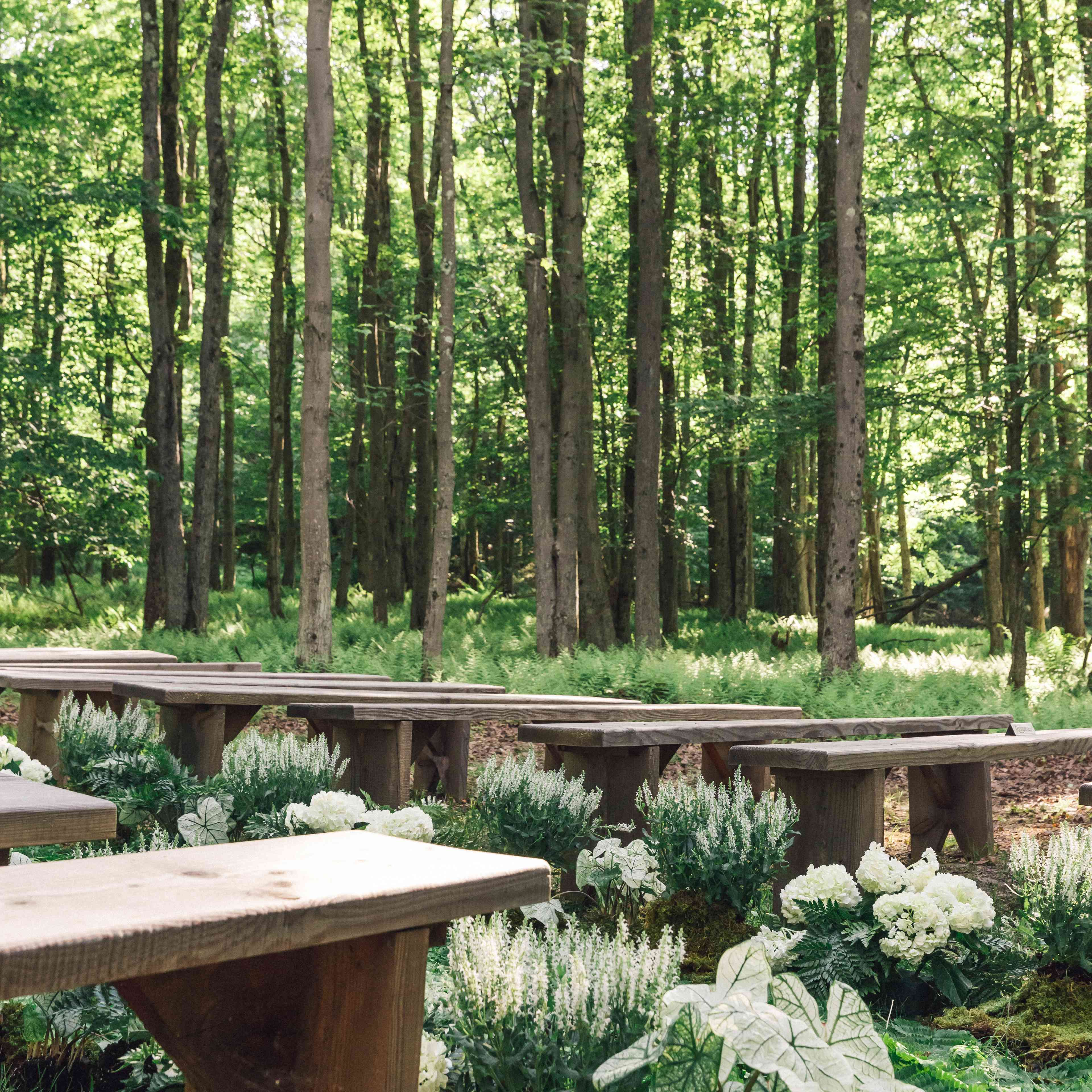 Forest ceremony wooden bench seating lined with ferns