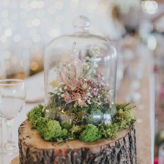 terrarium wedding centerpieces
