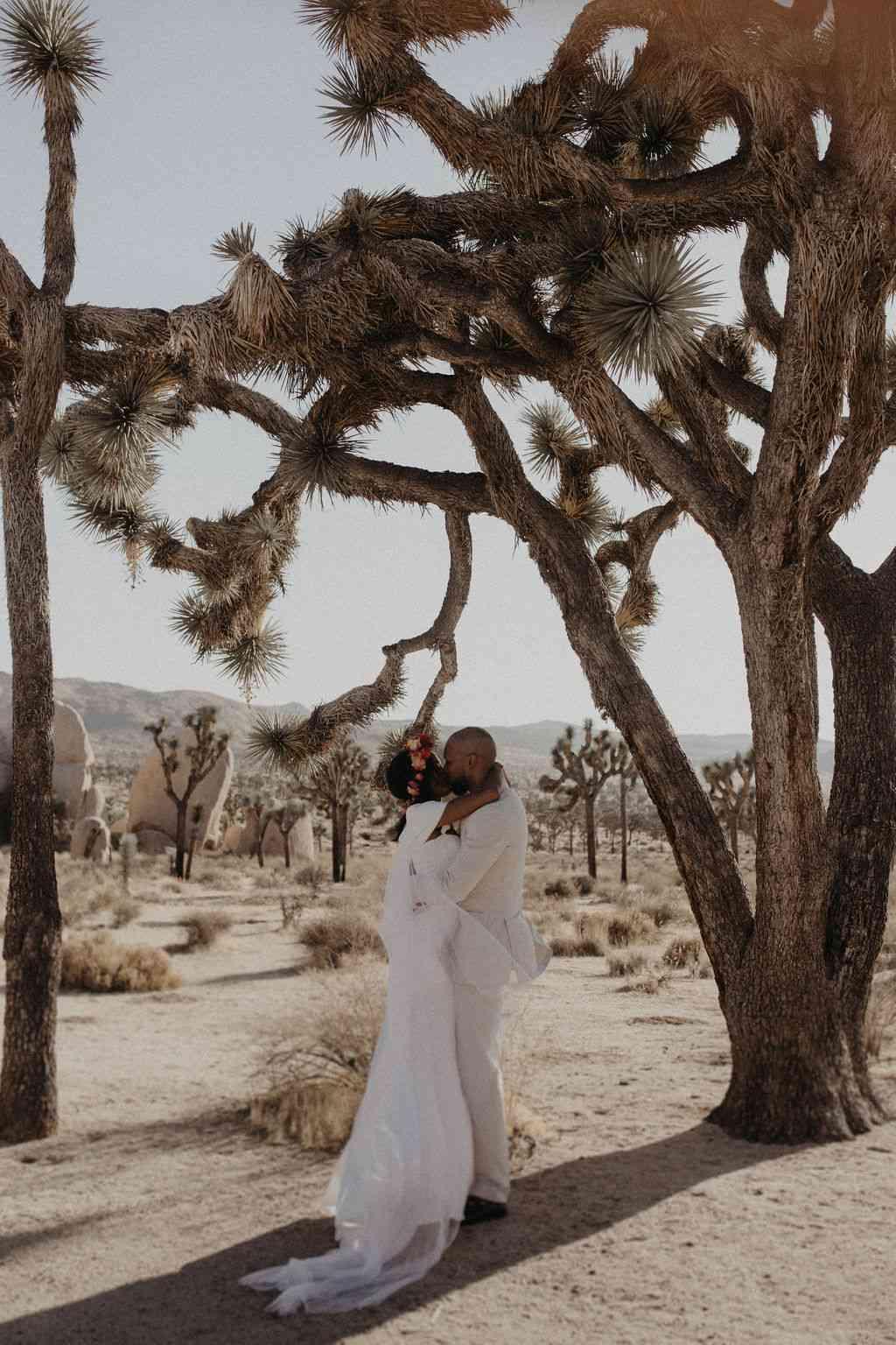 Joshua Tree national park elopement