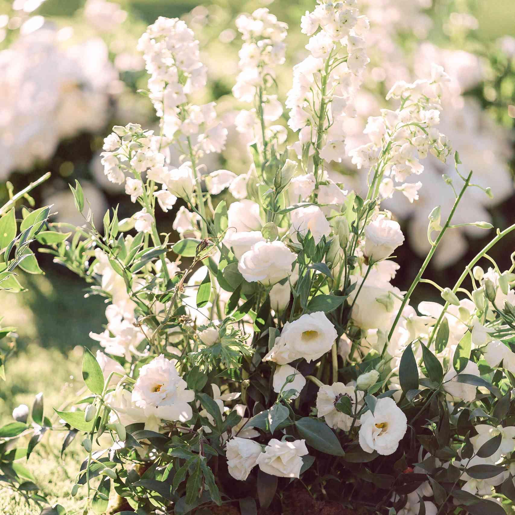 <p>white wedding flowers</p><br><br>