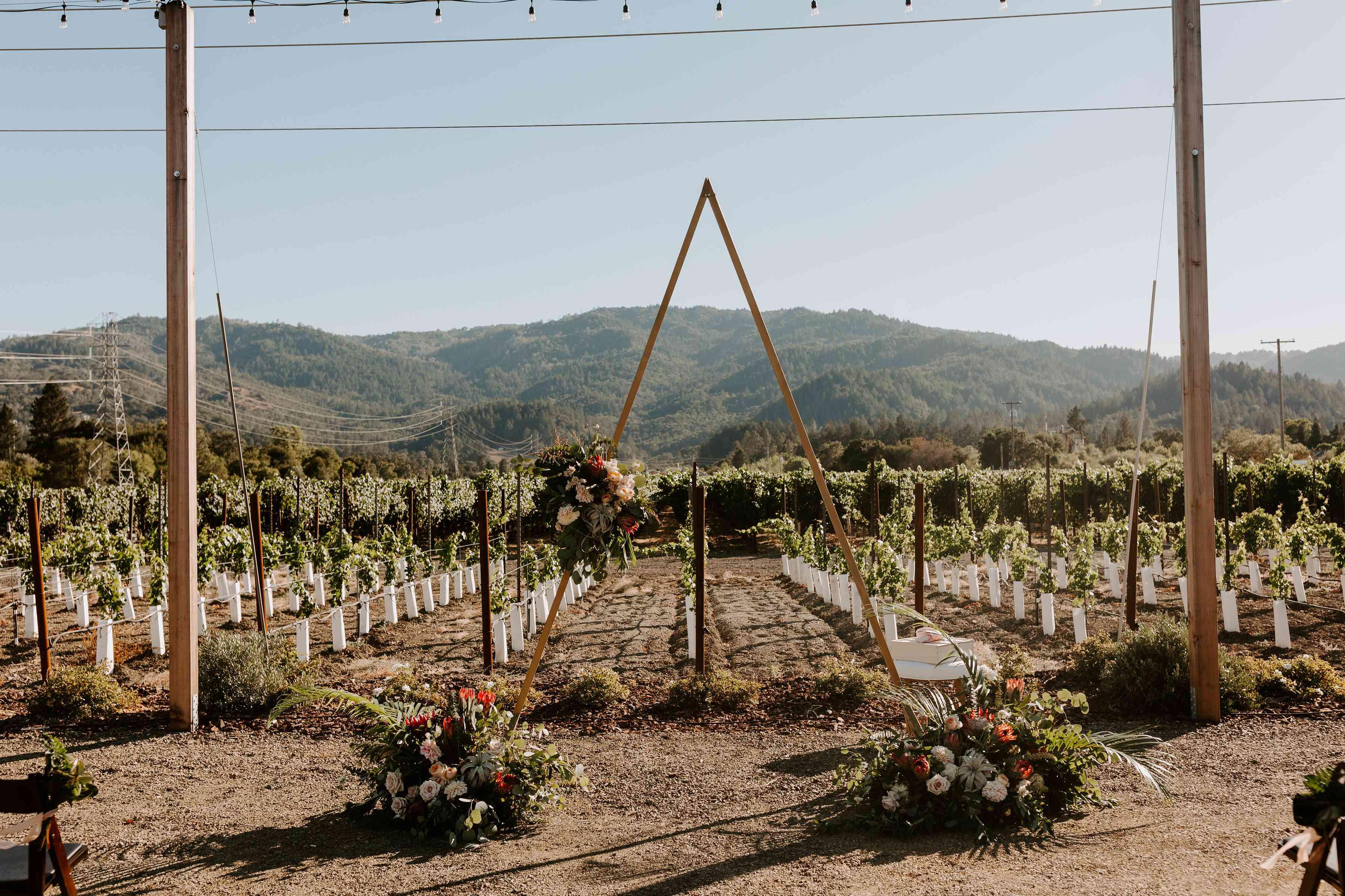 <p>vineyard ceremony setting</p><br><br>