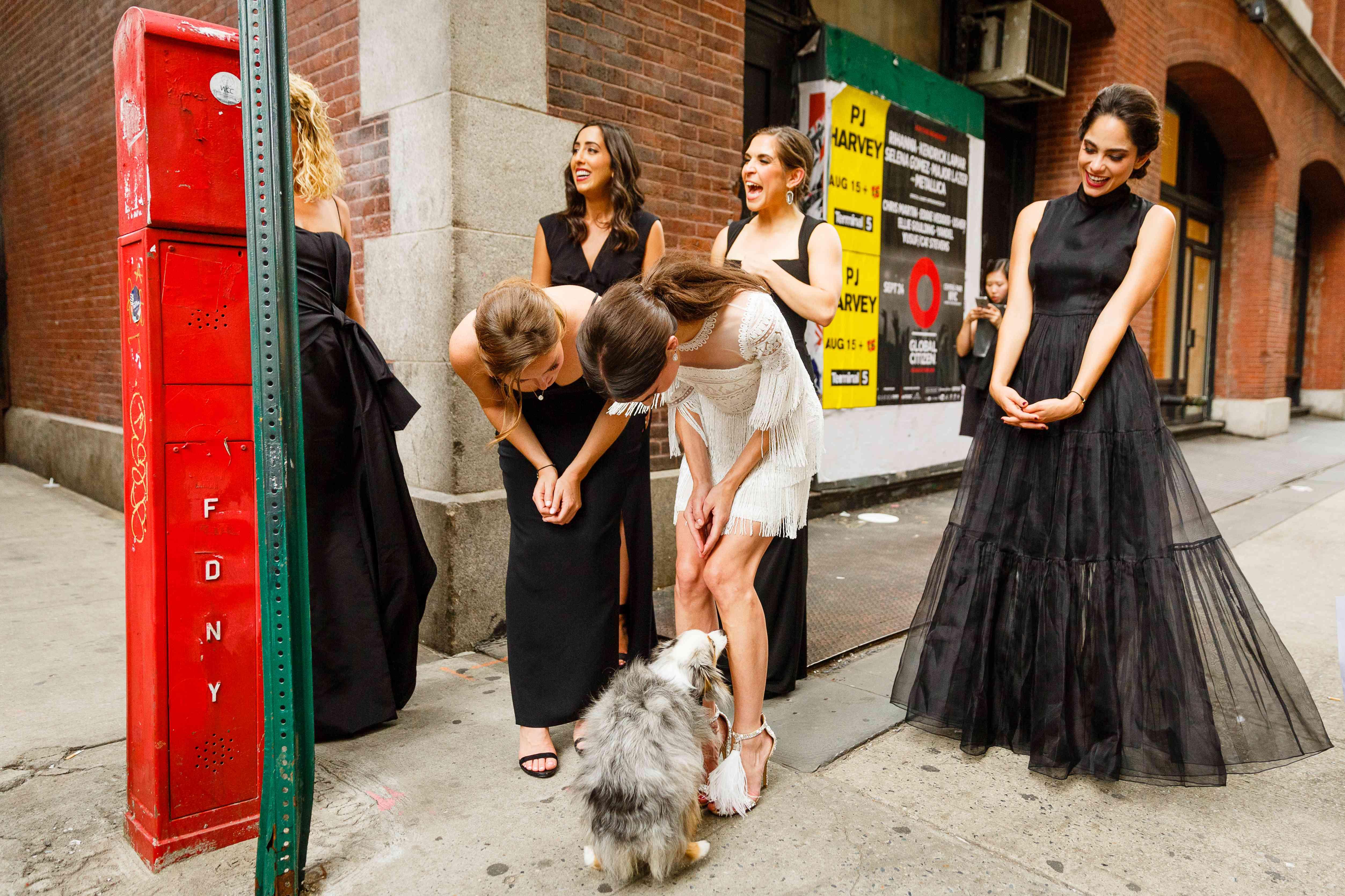 bridesmaids and dog at wedding