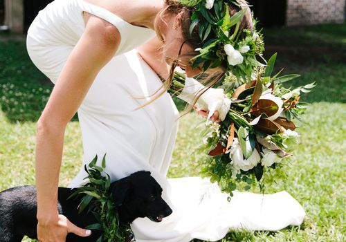 <p>bride with her dog at wedding</p>