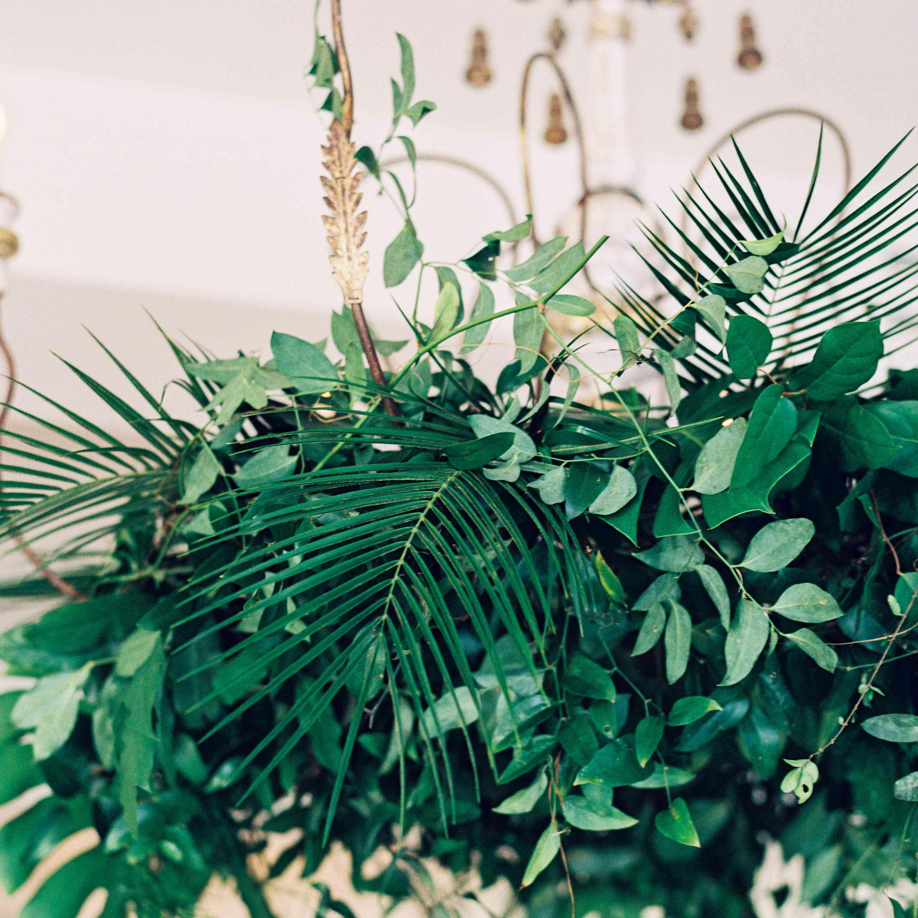 <p>tropical wedding reception decor</p><br><br>