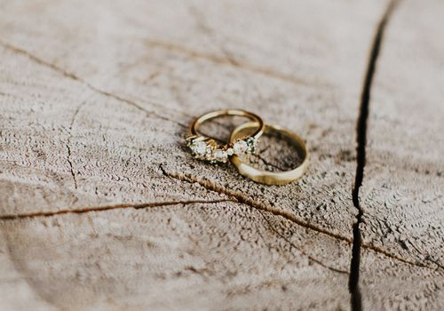 Yellow gold rings on a wood stump