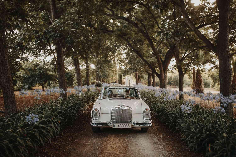<p>Getaway car</p><br><br>