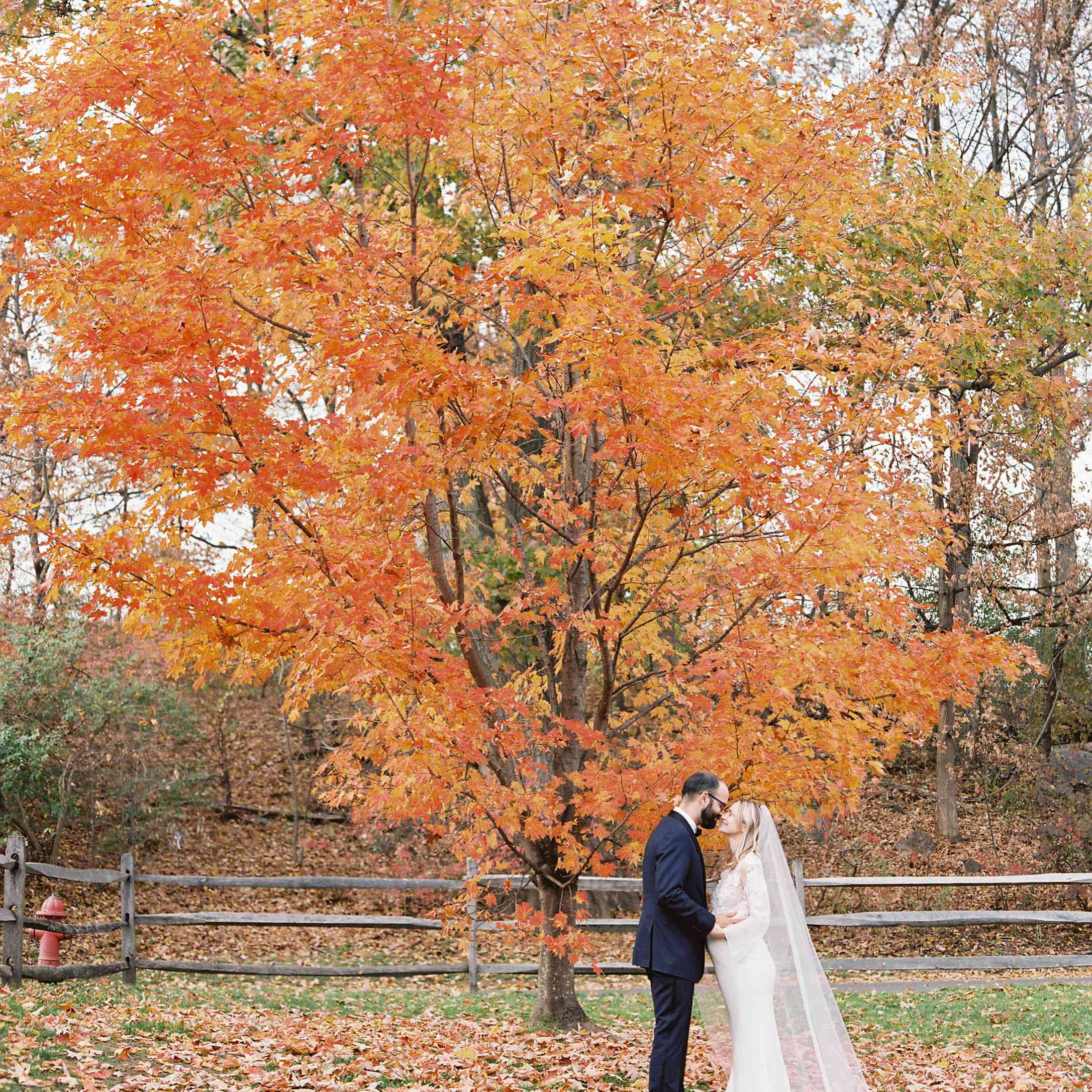 <p>Bride and groom kissing under fall foliage</p><br><br>