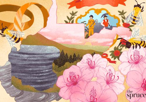 Illustration depicting wedding bands and north Carolina state flowers and symbols