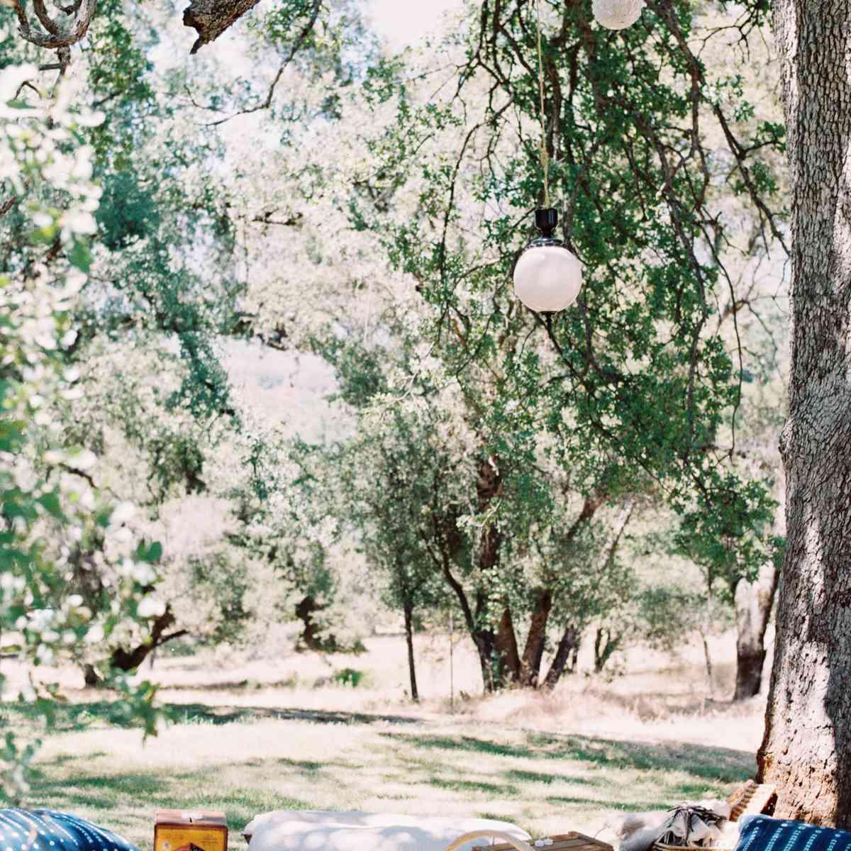 outdoor picnic spot