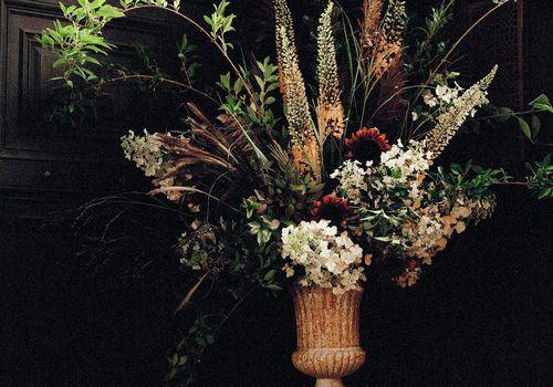 <p>flowers</p>