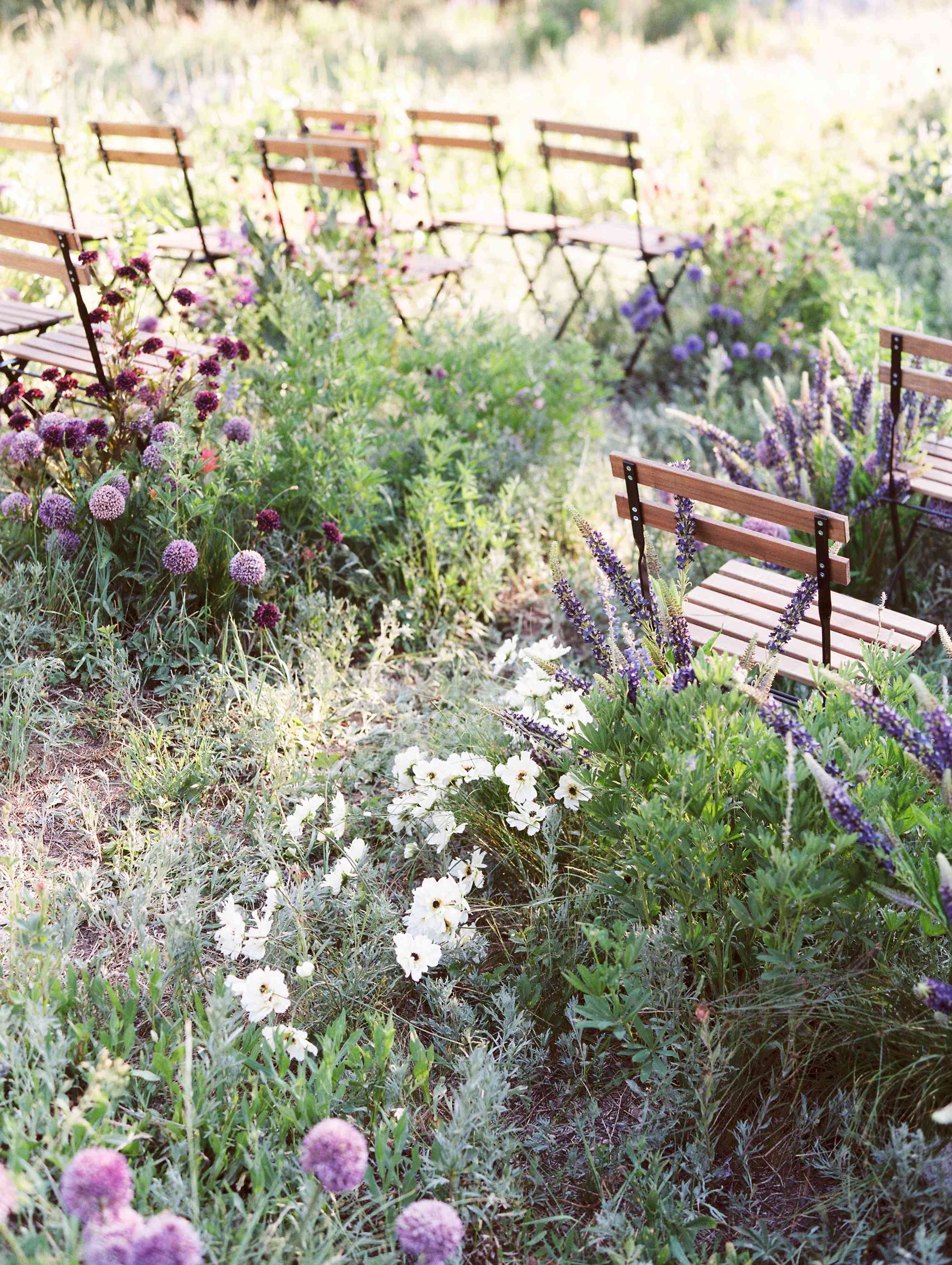 Wedding aisle lined with wildflowers
